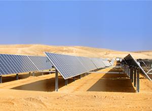 ronwood-Consulting-Desert-Sunlight1